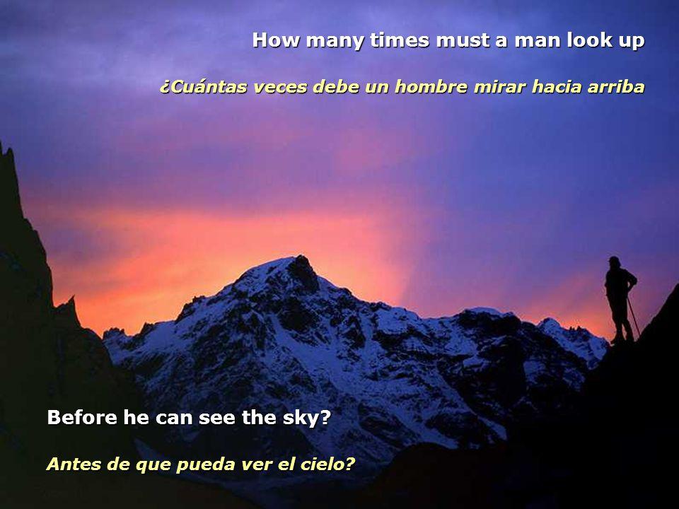 The answer my friend is blowing in the wind... La respuesta, amigo mío, está flotando en el viento... The answer is blowing in the wind. The answer is