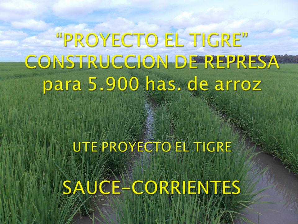 UTE PROYECTO EL TIGRE DON JOSE (8.705 Has.) RINCON DE TIGRE(5.533Has.) EL TIGRE(14.366Has.) RINCON DE ANIMAS (11.958 Has.