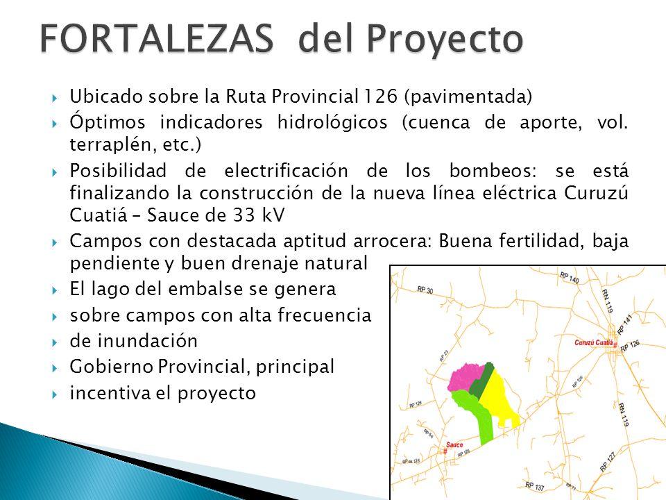 Ruta Provincial prevista (en amarillo)