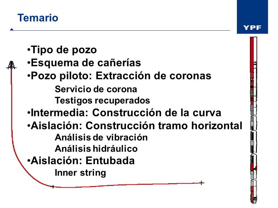Temario Tipo de pozo Esquema de cañerías Pozo piloto: Extracción de coronas Servicio de corona Testigos recuperados Intermedia: Construcción de la cur