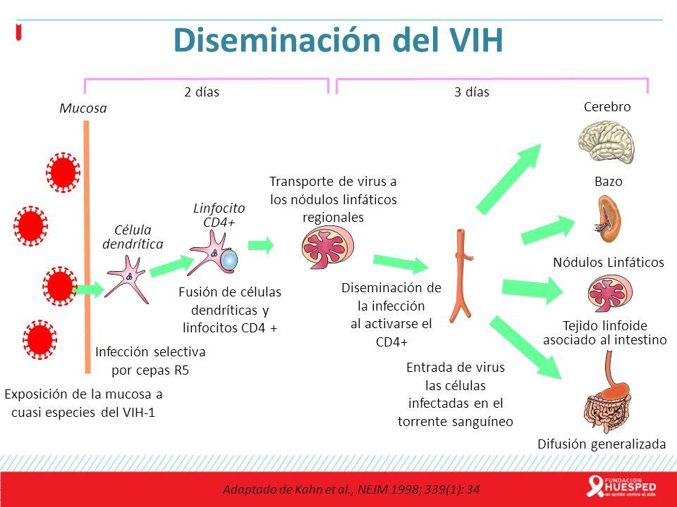 Diseminación del VIH Exposición de la mucosa a cuasi especies del VIH-1 Bazo Tejido linfoide asociado al intestino Nódulos Linfáticos Cerebro Célula d