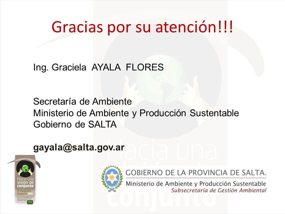 Gracias por su atención!!! Ing. Graciela AYALA FLORES Secretaría de Ambiente Ministerio de Ambiente y Producción Sustentable Gobierno de SALTA gayala@