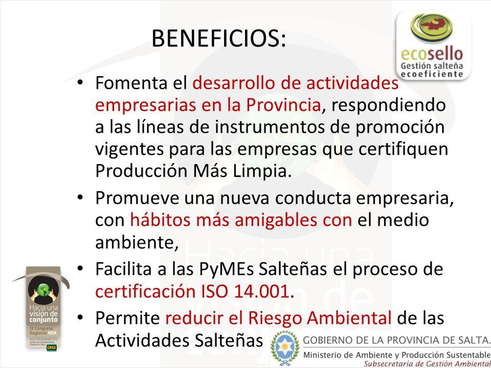 BENEFICIOS: Fomenta el desarrollo de actividades empresarias en la Provincia, respondiendo a las líneas de instrumentos de promoción vigentes para las