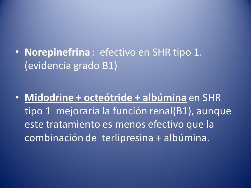 Norepinefrina : efectivo en SHR tipo 1.