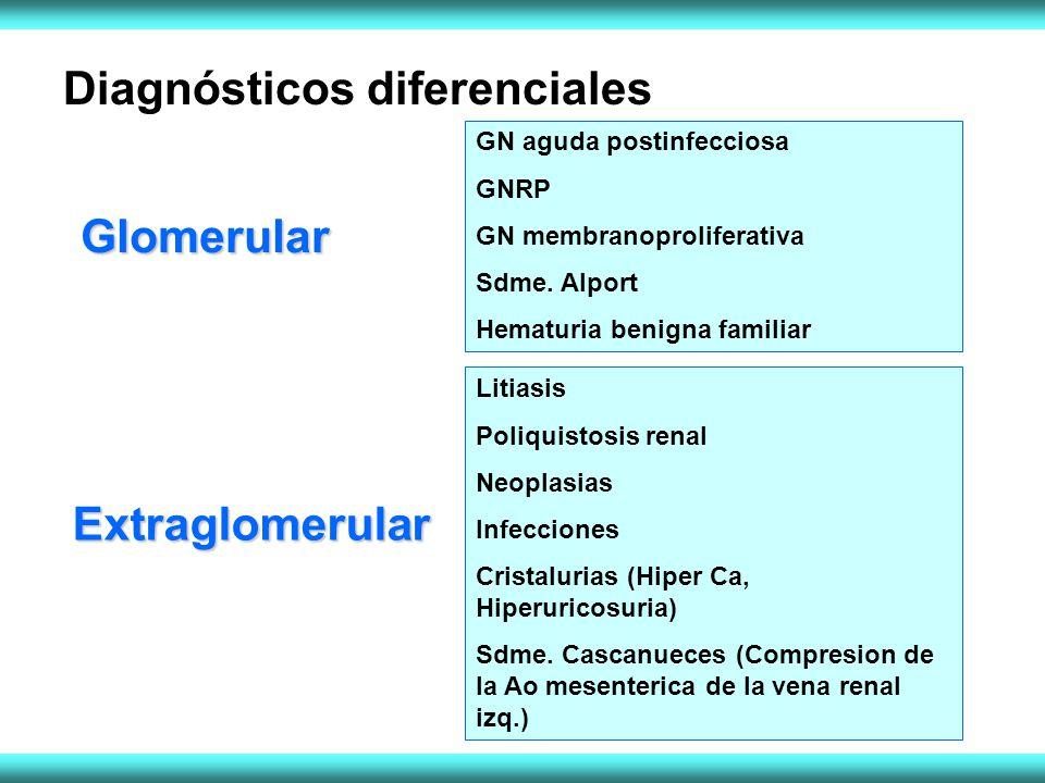 Diagnósticos diferenciales GN aguda postinfecciosa GNRP GN membranoproliferativa Sdme. Alport Hematuria benigna familiar Litiasis Poliquistosis renal