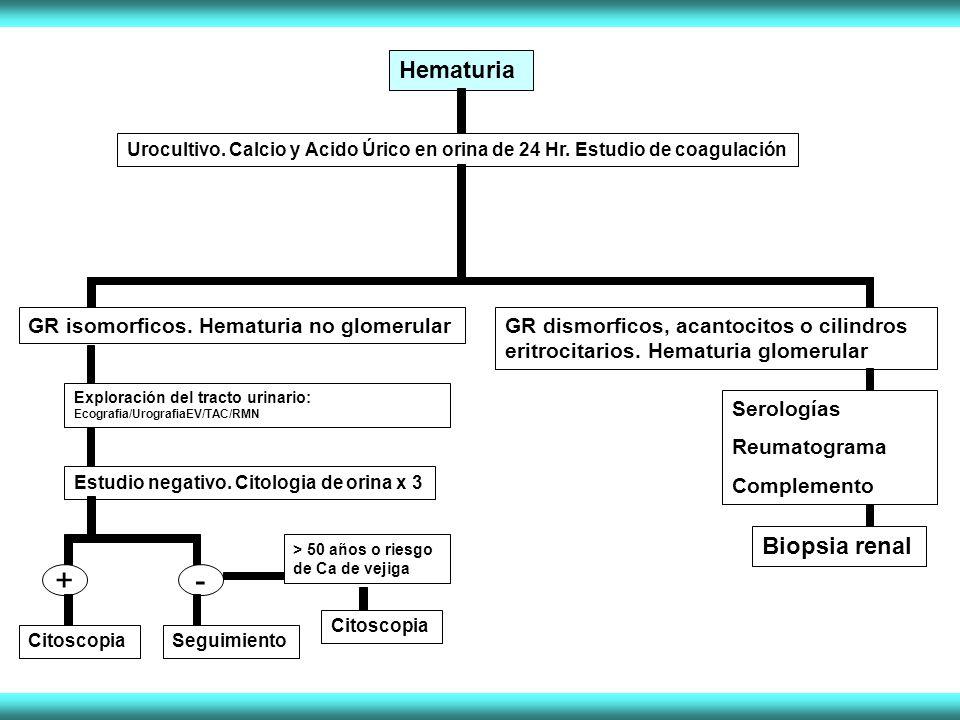 Hematuria Urocultivo. Calcio y Acido Úrico en orina de 24 Hr. Estudio de coagulación GR isomorficos. Hematuria no glomerular Exploración del tracto ur