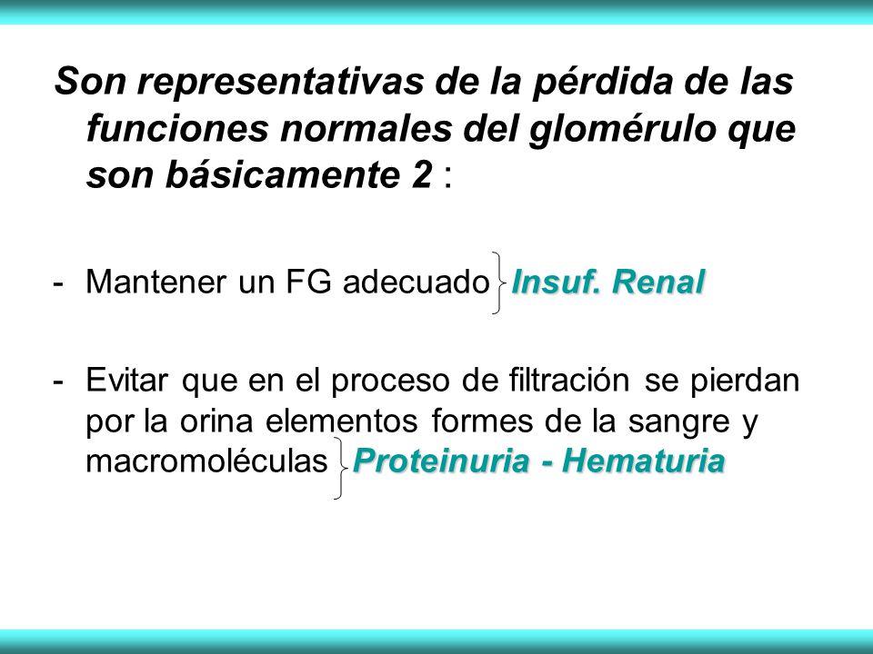 Son representativas de la pérdida de las funciones normales del glomérulo que son básicamente 2 : Insuf. Renal -Mantener un FG adecuado Insuf. Renal P