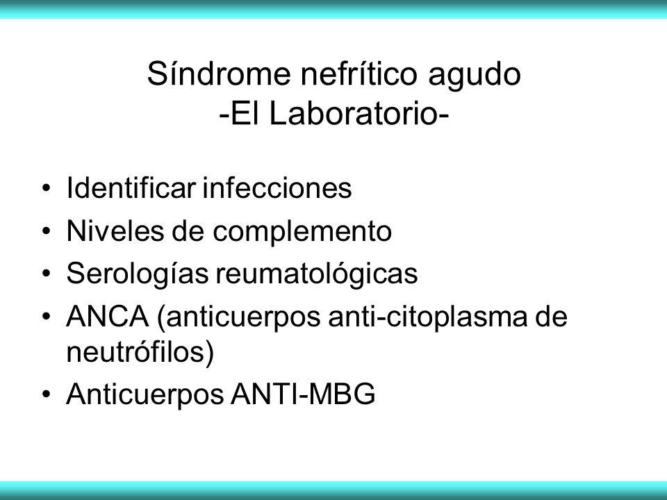 Síndrome nefrítico agudo -El Laboratorio- Identificar infecciones Niveles de complemento Serologías reumatológicas ANCA (anticuerpos anti-citoplasma de neutrófilos) Anticuerpos ANTI-MBG