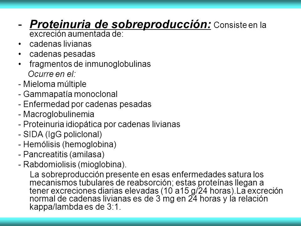 -Proteinuria de sobreproducción: Consiste en la excreción aumentada de: cadenas livianas cadenas pesadas fragmentos de inmunoglobulinas Ocurre en el: