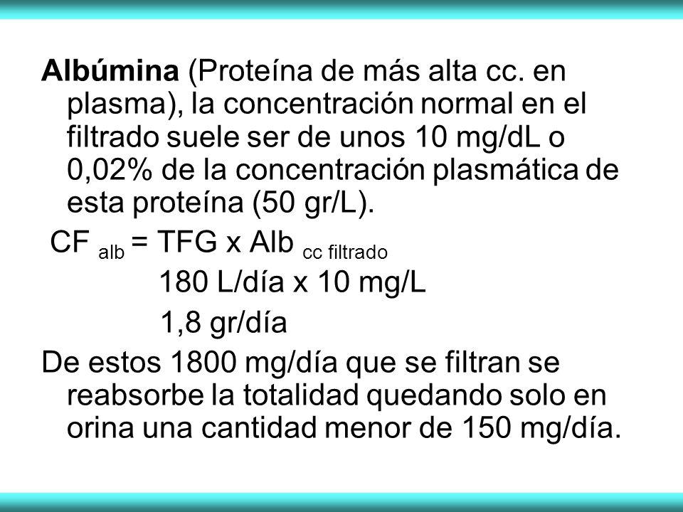 Albúmina (Proteína de más alta cc. en plasma), la concentración normal en el filtrado suele ser de unos 10 mg/dL o 0,02% de la concentración plasmátic