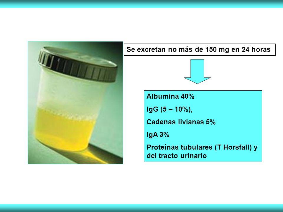 Se excretan no más de 150 mg en 24 horas Albumina 40% IgG (5 – 10%), Cadenas livianas 5% IgA 3% Proteínas tubulares (T Horsfall) y del tracto urinario