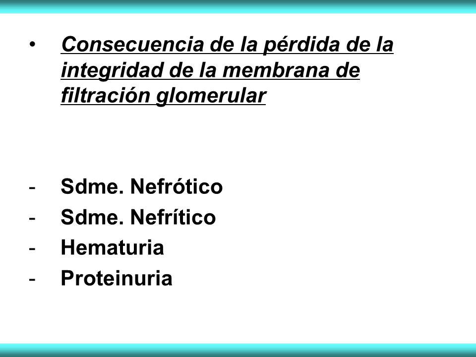 Consecuencia de la pérdida de la integridad de la membrana de filtración glomerular -Sdme. Nefrótico -Sdme. Nefrítico -Hematuria -Proteinuria