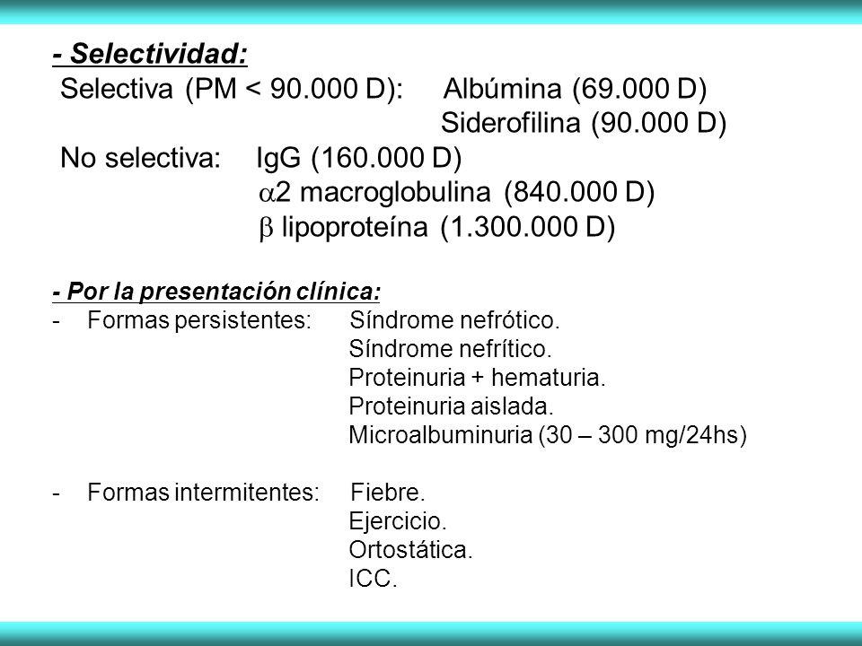 - Selectividad: Selectiva (PM < 90.000 D): Albúmina (69.000 D) Siderofilina (90.000 D) No selectiva: IgG (160.000 D) 2 macroglobulina (840.000 D) lipoproteína (1.300.000 D) - Por la presentación clínica: - Formas persistentes: Síndrome nefrótico.