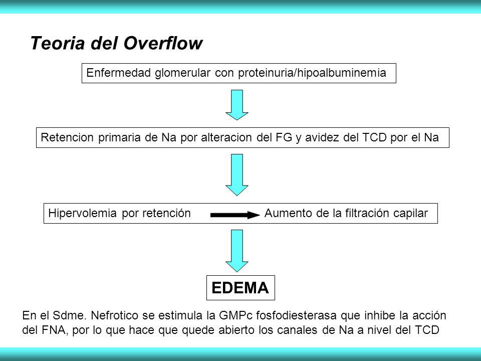 Teoria del Overflow Enfermedad glomerular con proteinuria/hipoalbuminemia Retencion primaria de Na por alteracion del FG y avidez del TCD por el Na EDEMA Hipervolemia por retención Aumento de la filtración capilar En el Sdme.