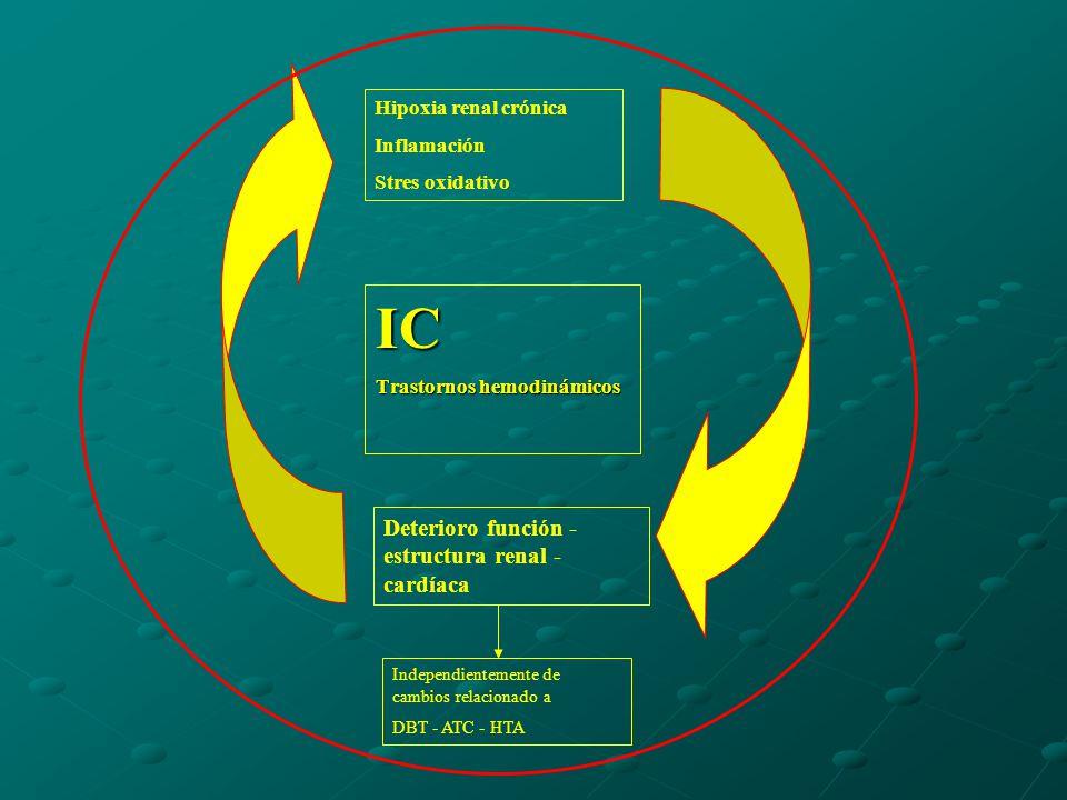IC Trastornos hemodinámicos Hipoxia renal crónica Inflamación Stres oxidativo Deterioro función - estructura renal - cardíaca Independientemente de cambios relacionado a DBT - ATC - HTA