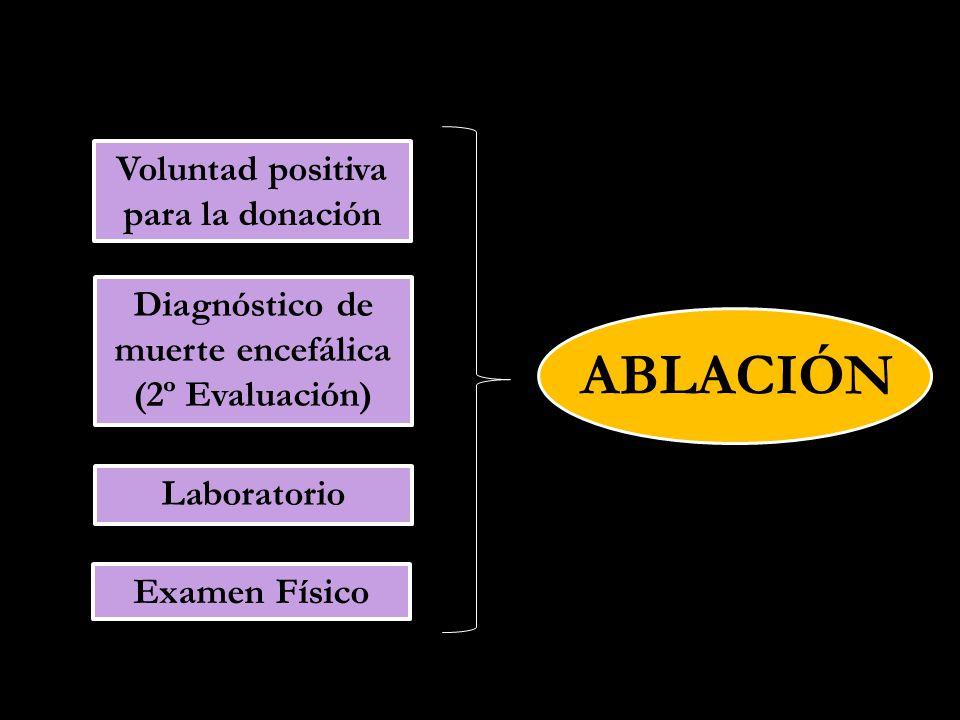 ABLACIÓN Laboratorio Examen Físico Diagnóstico de muerte encefálica (2º Evaluación) Voluntad positiva para la donación
