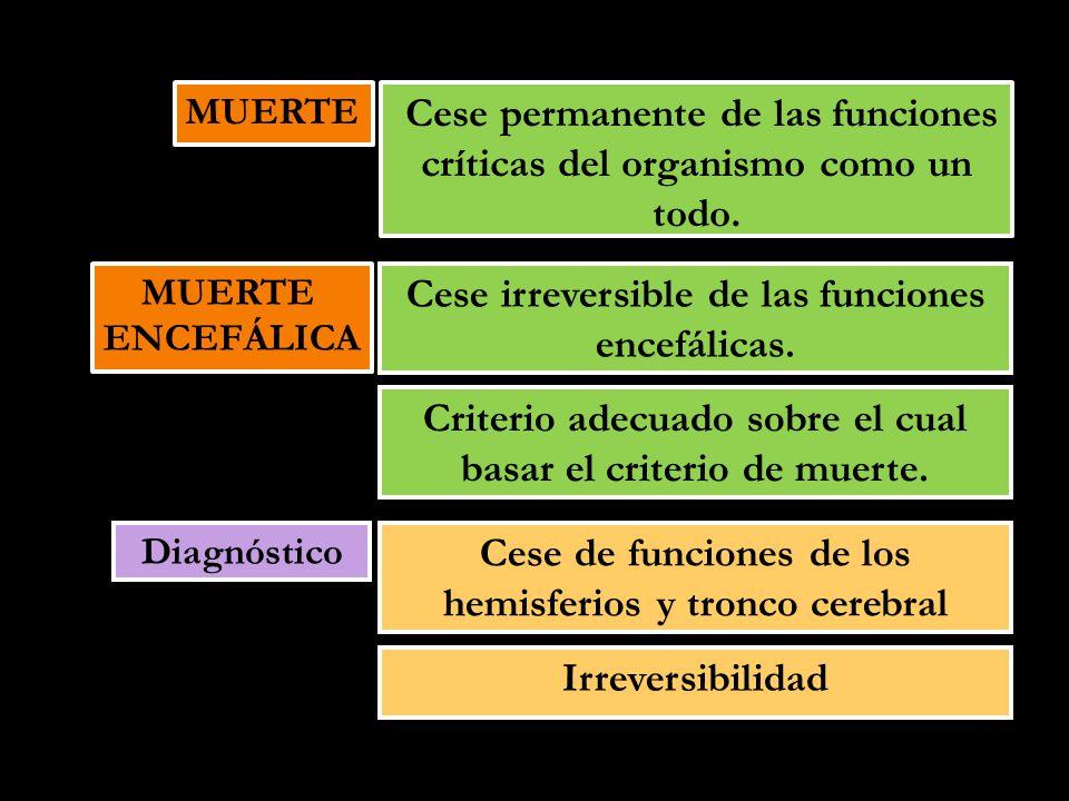 MUERTE ENCEFÁLICA MUERTE ENCEFÁLICA Cese irreversible de las funciones encefálicas. Criterio adecuado sobre el cual basar el criterio de muerte. Diagn