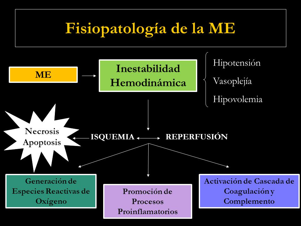 ME Trastornos Respiratorios Alteración del Centro Respiratorio APNEA ARM Trombosis en Circulación pulmonar como consecuencia de procesos de Isquemia / Reperfusión Edema pulmonar por aumento de permeabilidad capilar y expresión de moléculas de adhesión y citoquinas proinflamatorias (TNF)