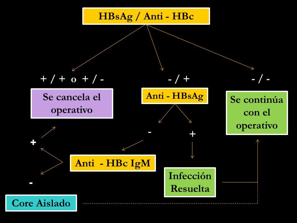 HBsAg / Anti - HBc + / + o + / -- / + - / - Se cancela el operativo Anti - HBsAg - Anti - HBc IgM + Infección Resuelta Se continúa con el operativo +