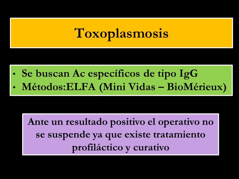 Toxoplasmosis Se buscan Ac específicos de tipo IgG Métodos:ELFA (Mini Vidas – BioMérieux) Ante un resultado positivo el operativo no se suspende ya qu
