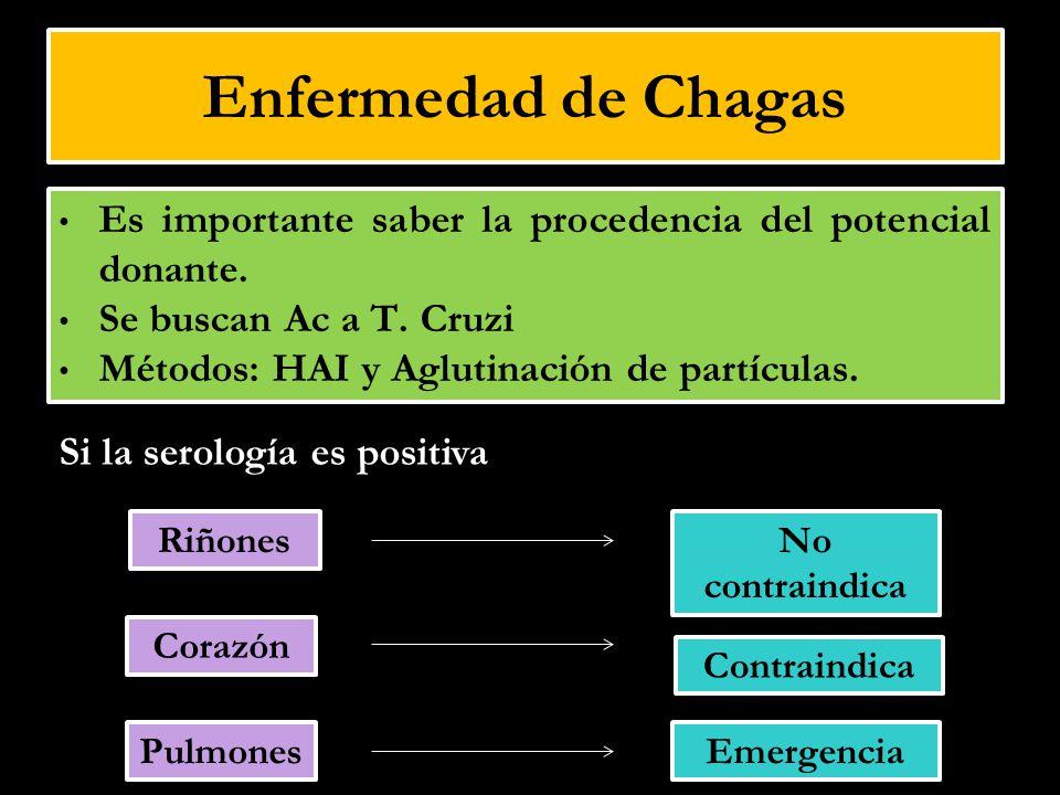 Enfermedad de Chagas Es importante saber la procedencia del potencial donante. Se buscan Ac a T. Cruzi Métodos: HAI y Aglutinación de partículas. Riño