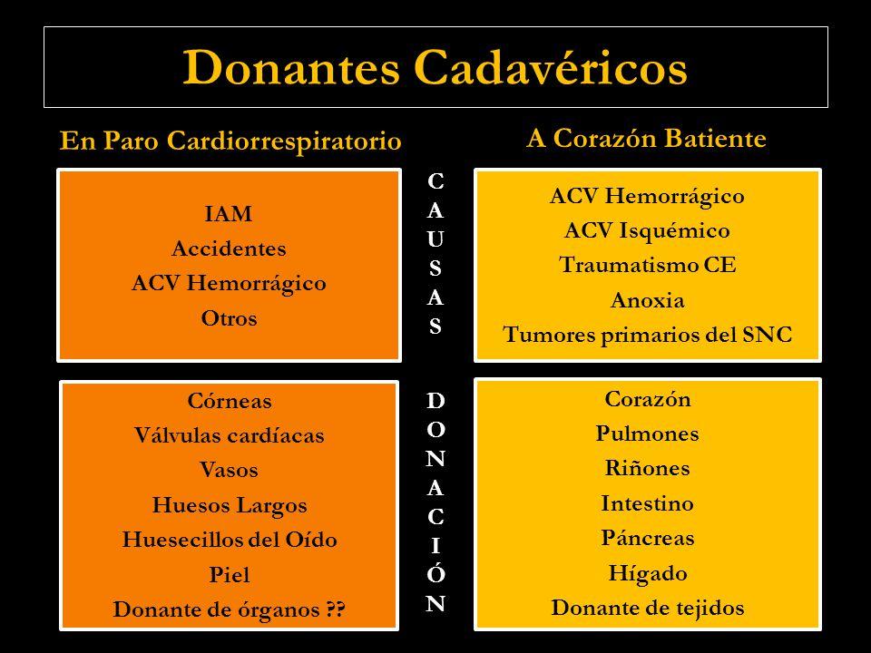 Donantes Cadavéricos En Paro Cardiorrespiratorio A Corazón Batiente ACV Hemorrágico ACV Isquémico Traumatismo CE Anoxia Tumores primarios del SNC ACV