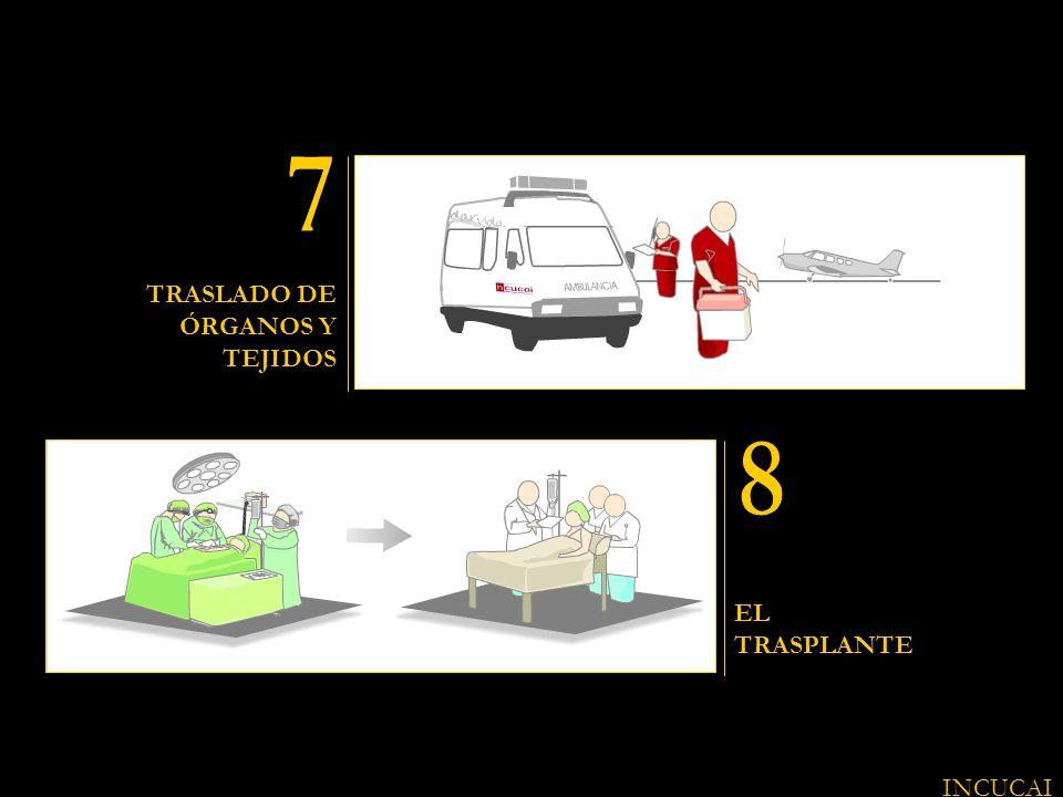 TRASLADO DE ÓRGANOS Y TEJIDOS EL TRASPLANTE INCUCAI