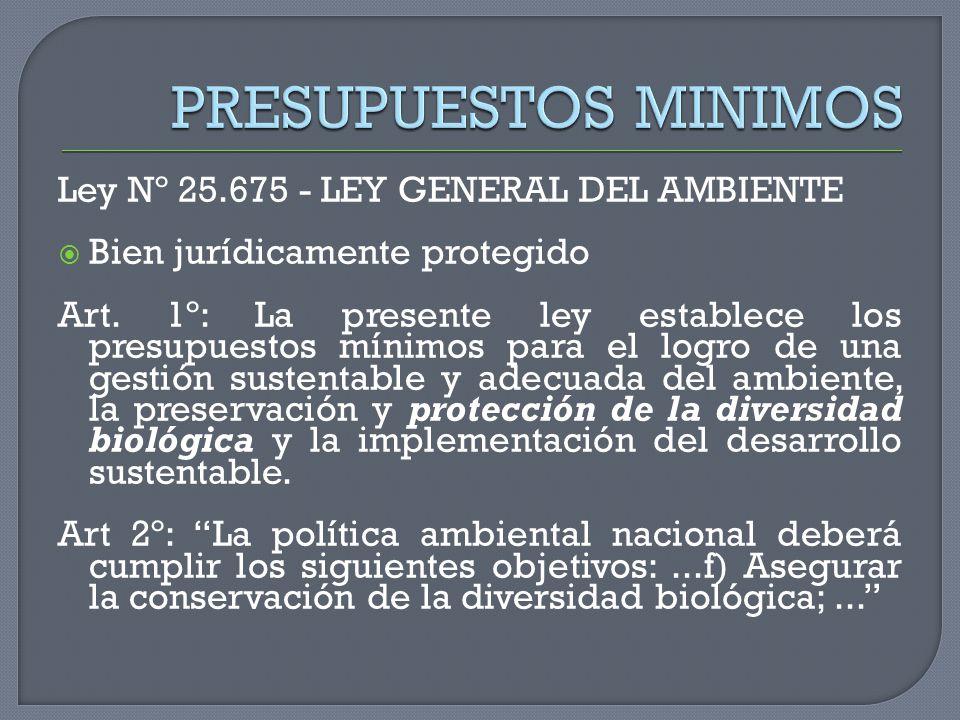 Ley Nº 25.675 - LEY GENERAL DEL AMBIENTE Bien jurídicamente protegido Art. 1º: La presente ley establece los presupuestos mínimos para el logro de una