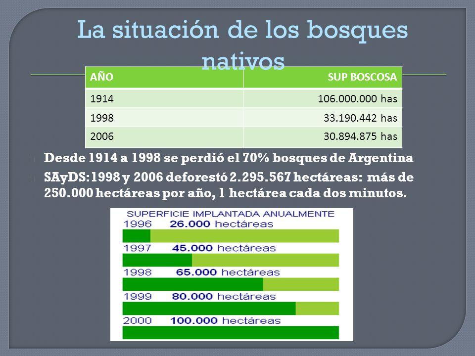 Desde 1914 a 1998 se perdió el 70% bosques de Argentina SAyDS:1998 y 2006 deforestó 2.295.567 hectáreas: más de 250.000 hectáreas por año, 1 hectárea