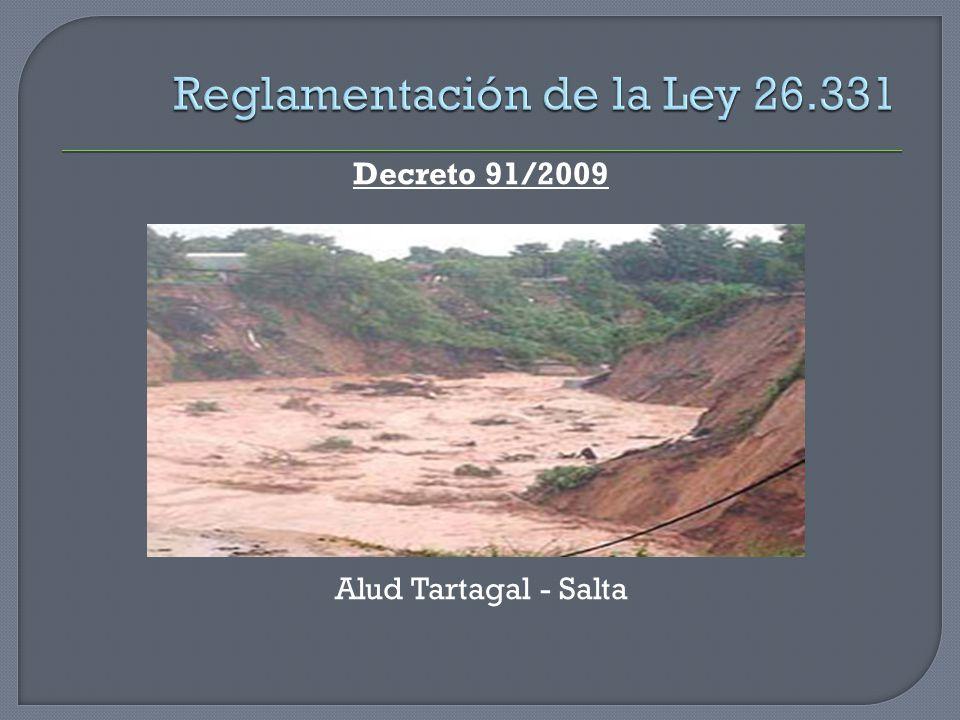 Decreto 91/2009 Alud Tartagal - Salta