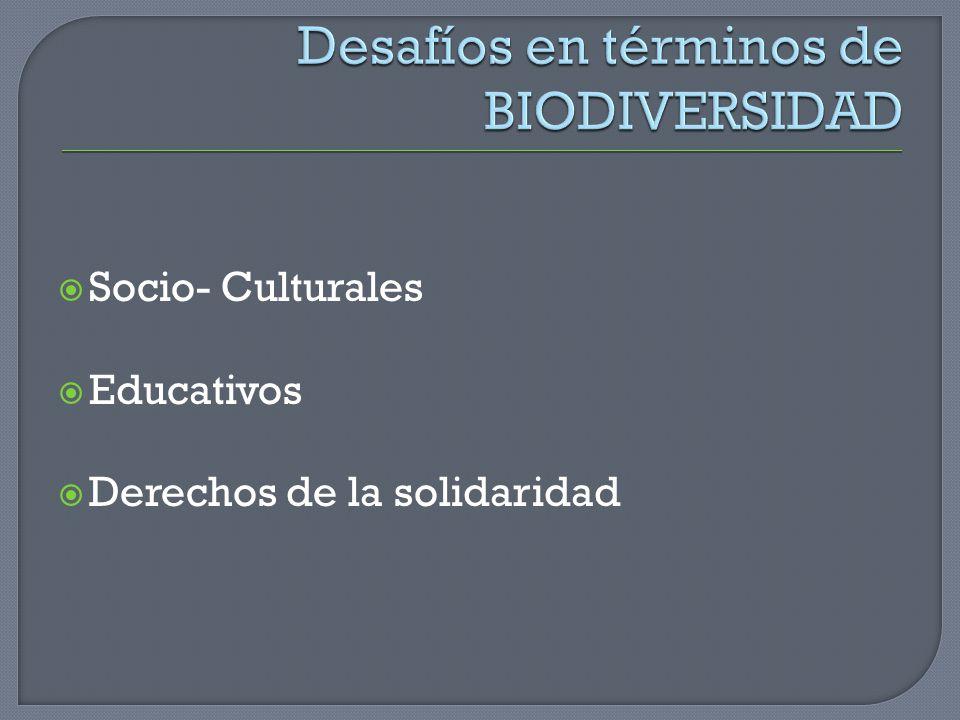 Socio- Culturales Educativos Derechos de la solidaridad