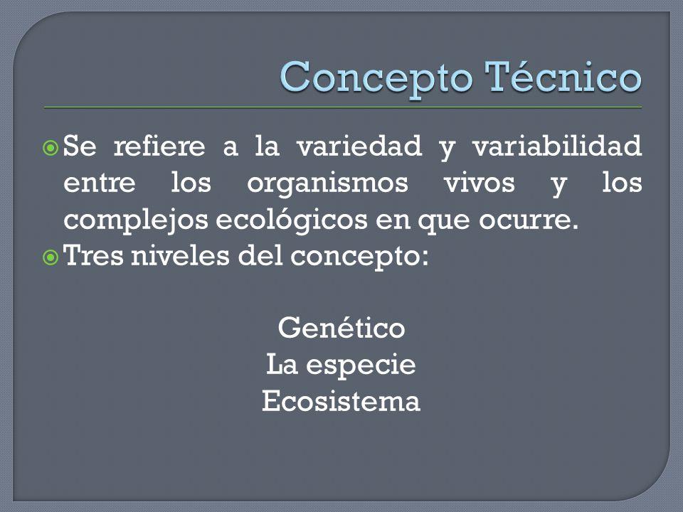 Se refiere a la variedad y variabilidad entre los organismos vivos y los complejos ecológicos en que ocurre. Tres niveles del concepto: Genético La es