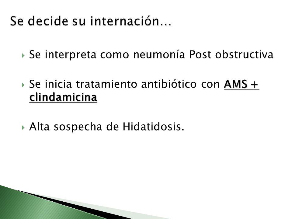 Se interpreta como neumonía Post obstructiva AMS + clindamicina Se inicia tratamiento antibiótico con AMS + clindamicina Alta sospecha de Hidatidosis.