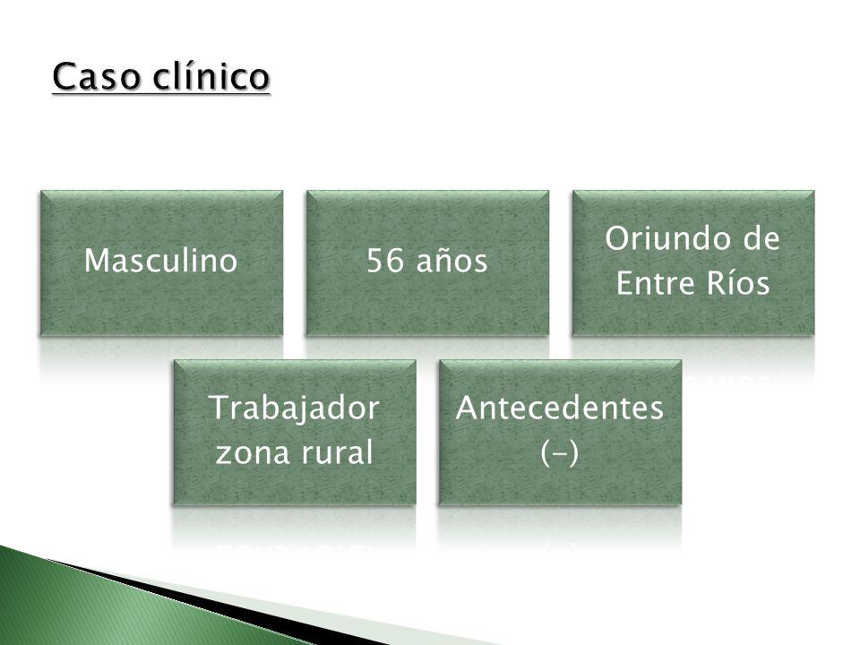 Masculino56 años Oriundo de Entre Ríos Trabajador zona rural Antecedentes (-)