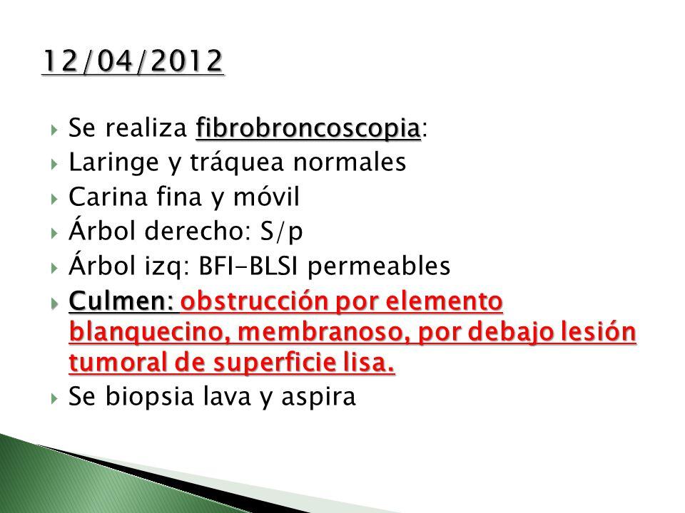 fibrobroncoscopia Se realiza fibrobroncoscopia: Laringe y tráquea normales Carina fina y móvil Árbol derecho: S/p Árbol izq: BFI-BLSI permeables Culme