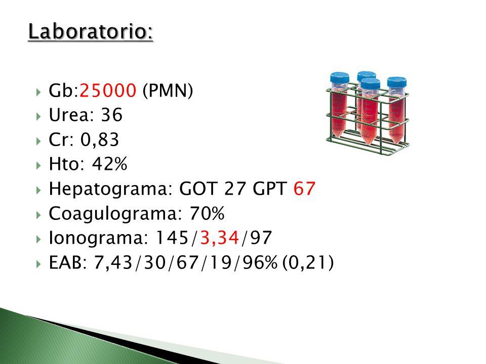 Gb:25000 (PMN) Urea: 36 Cr: 0,83 Hto: 42% Hepatograma: GOT 27 GPT 67 Coagulograma: 70% Ionograma: 145/3,34/97 EAB: 7,43/30/67/19/96% (0,21)