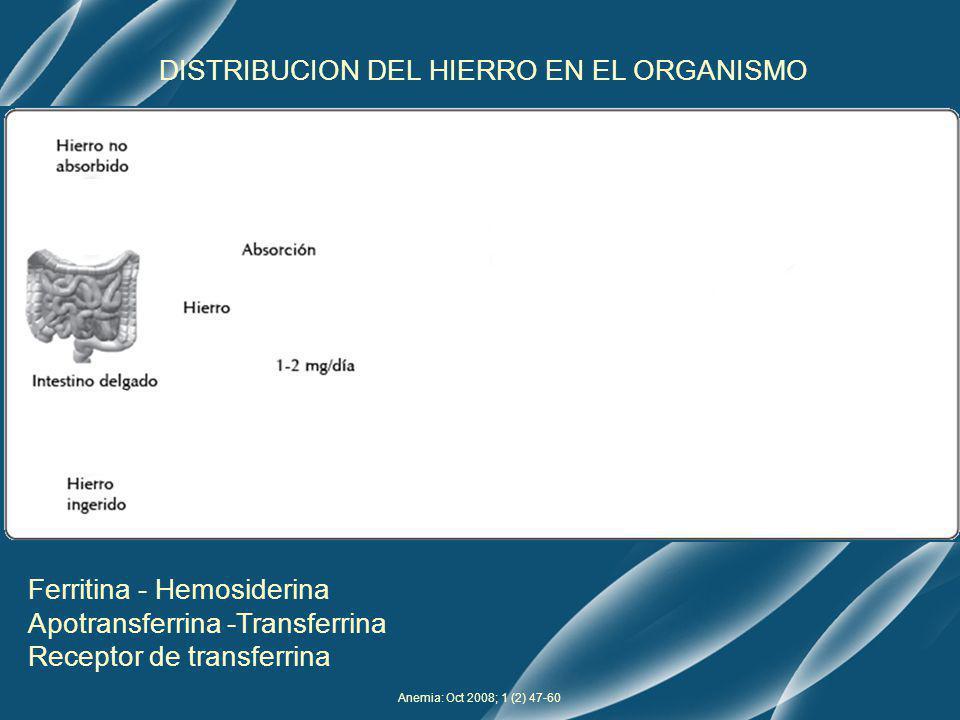 Test Inmunoturbidimétrico potenciado con partículas Analizador Roche/Hitachi 902 Luz incidente Luz no dispersada Turbidimetría Ac anti-sTfR + suero RECEPTOR SOLUBLE DE TRANSFERRINA Principio de medición Luz dispersada Nefelometría Valores de referencia: Hombre: 2,2 – 5,0 mg/L Mujeres: 1,9 – 4,4 mg/L