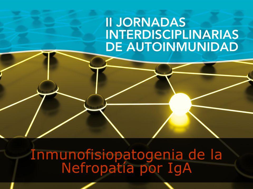 Inmunofisiopatogenia de la Nefropatía por IgA