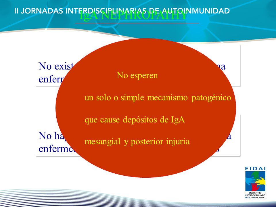 IgA NEPHROPATHY No existe evidencia de que la NIgA sea una enfermedad sola No hay pruebas de que la NIgA sea la misma enfermedad en distintas partes d