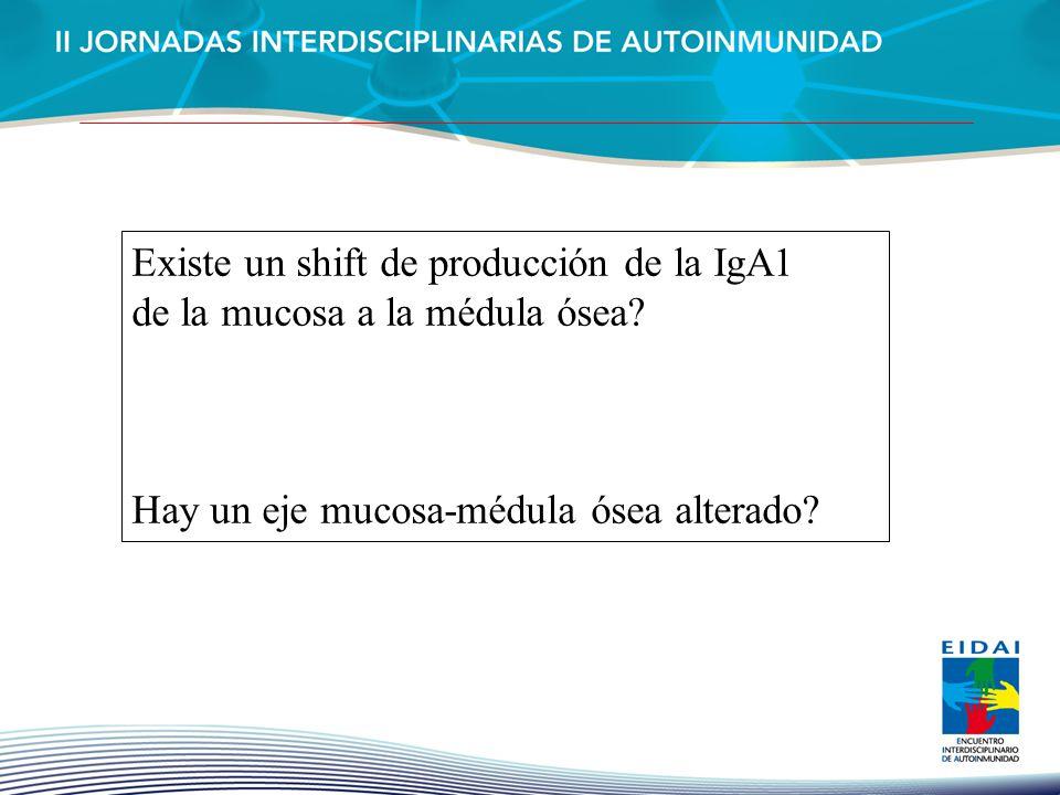 Existe un shift de producción de la IgA1 de la mucosa a la médula ósea? Hay un eje mucosa-médula ósea alterado?