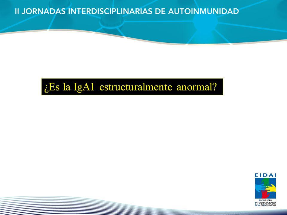 ¿Es la IgA1 estructuralmente anormal?