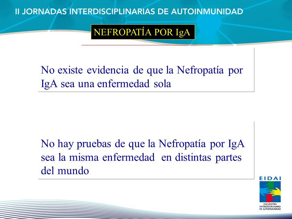 NEFROPATÍA POR IgA No existe evidencia de que la Nefropatía por IgA sea una enfermedad sola No hay pruebas de que la Nefropatía por IgA sea la misma e