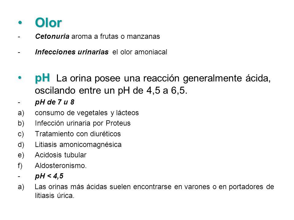 OlorOlor -Cetonuria aroma a frutas o manzanas -Infecciones urinarias el olor amoniacal pHpH La orina posee una reacción generalmente ácida, oscilando