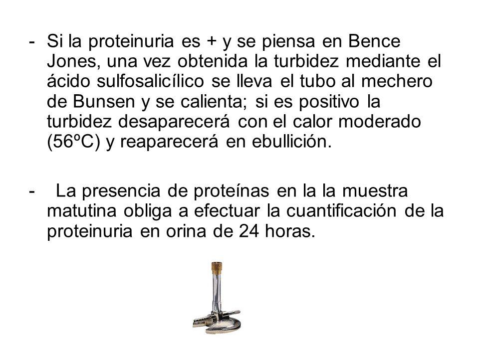 -Si la proteinuria es + y se piensa en Bence Jones, una vez obtenida la turbidez mediante el ácido sulfosalicílico se lleva el tubo al mechero de Buns