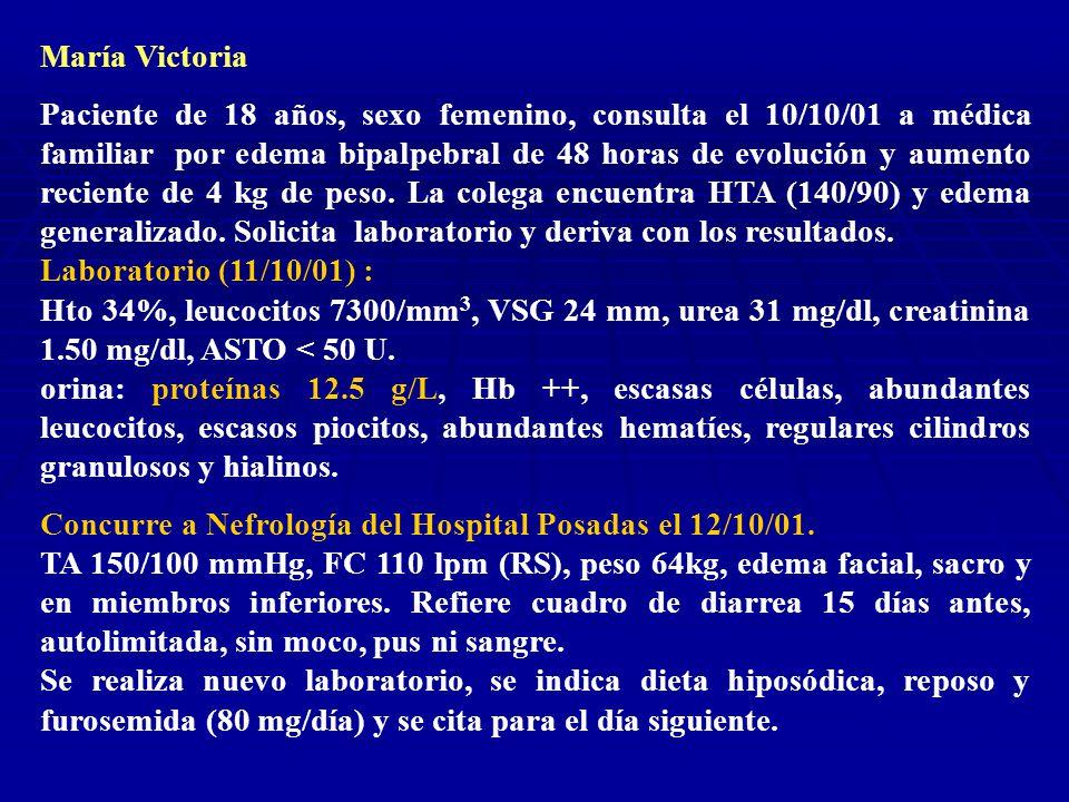 Laboratorio 12/10: Hto 30%, leucocitos 6300/ mm 3, plaquetas 78000/ mm 3, VSG 30mm, urea 67 mg/dl, creatinina 1.90 mg/dl, colesterol 348 mg/dl, triglicéridos 208 mg/dl, ionograma 134/4.6 mM/L, proteínas totales 4.8 g/dl, albúmina 2.6 g/dl, ASTO 200 U, C3 49, C4 15.
