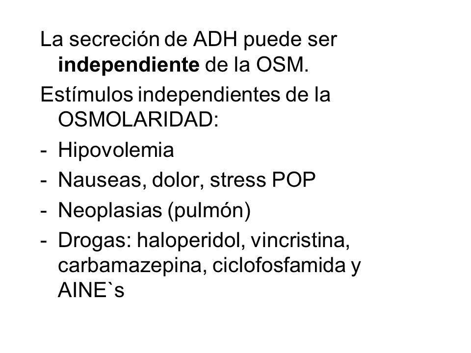 La secreción de ADH puede ser independiente de la OSM.