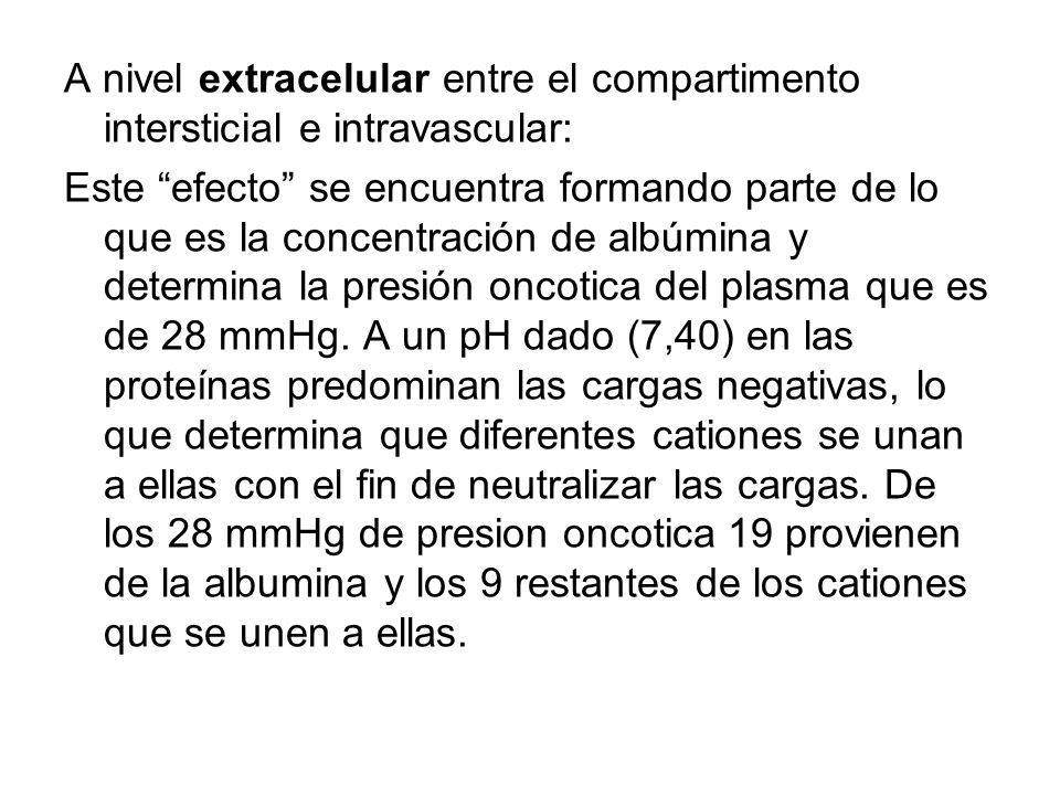 A nivel extracelular entre el compartimento intersticial e intravascular: Este efecto se encuentra formando parte de lo que es la concentración de albúmina y determina la presión oncotica del plasma que es de 28 mmHg.
