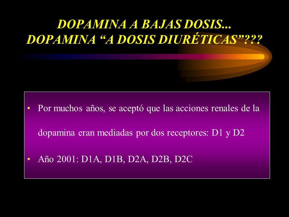 DOPAMINA A BAJAS DOSIS... DOPAMINA A DOSIS DIURÉTICAS??? Por muchos años, se aceptó que las acciones renales de la dopamina eran mediadas por dos rece