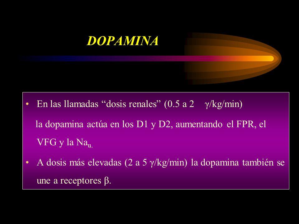 DOPAMINA En las llamadas dosis renales (0.5 a 2 γ/kg/min) la dopamina actúa en los D1 y D2, aumentando el FPR, el VFG y la Na u. A dosis más elevadas