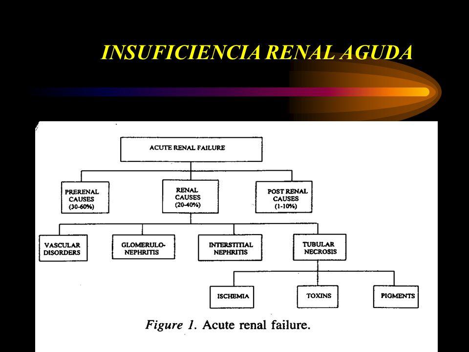EPIDEMIOLOGÍA 1970 IRA: aumento de sCr de 0.5 mg/dl en basal de 2 mg/dl aumento de sCr de 1 mg/dl en basal de 2-4.9 mg/dl aumento de sCr de 1.5 mg/dl en basal > 5 mg/dl INCIDENCIA DE IRA adquirida en hospital: 4.9% Hou SH Am J Med 1983; 74:243 42% por hipoperfusión renal 18% post-quirúrgica 12% por contraste 7% por aminoglucósidos